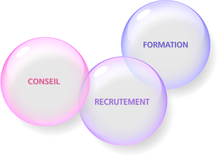 Conseil, Recrutement, Formation