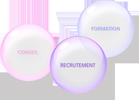 Conseil, Recrutement, Formation